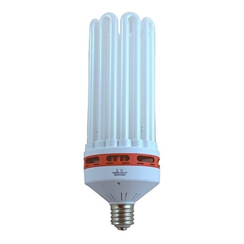 SPL Horticulture 150 Watt CFL Compact Fluorescent Grow Light Bulb System of 6400k for Plant Growing