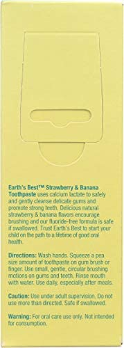 31CqVBeCvyL. AC - Earth's Best Toddler Toothpaste Strawberry Banana, 1.6 Ounce