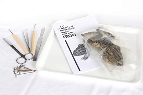 (Frog Dissection Kit)