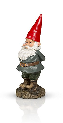 THE Garden Gnome 10'' by GardenGnomeWorld.com (Image #3)