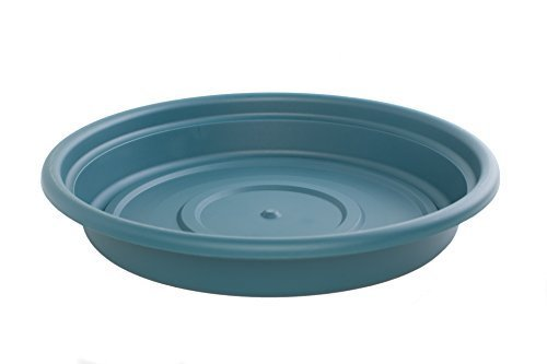 Bloem SDC16-48 Dura Cotta Plant Saucer, 16-Inch, Turbulent by Bloem