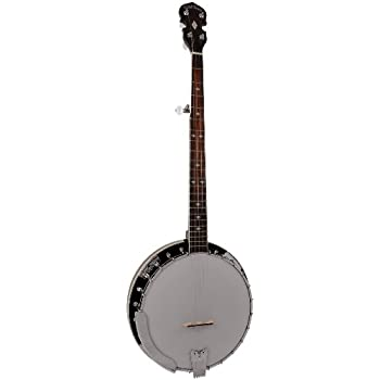 Gold Tone BG-250 Bluegrass Special Banjo (Five String, Vintage Brown)