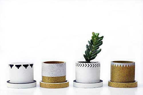 Mini Plant Pots for Succulents Herbs or Cactus, by Mos Cactus - Make Any Small Space Come Alive - Decorative Cement Planter Accessories - 3 Inch 4 pack - Stylish Gift Plants not included
