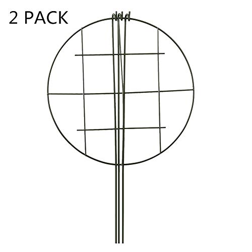 - RTWAY 2 Pack Plant Grids with 3 Legs Heavy Duty Grow Through Hoops Free-Standing Support for Flower and Plant, 12