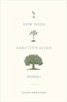 How Does Sanctification Work? by [Powlison, David]
