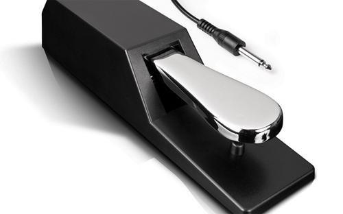 Sam Keyboard Ash (Alesis ASP-2 Sustain Pedal)
