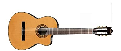 Ibanez GA Series GA6CE Classical Cutaway Acoustic-Electric Guitar from Ibanez