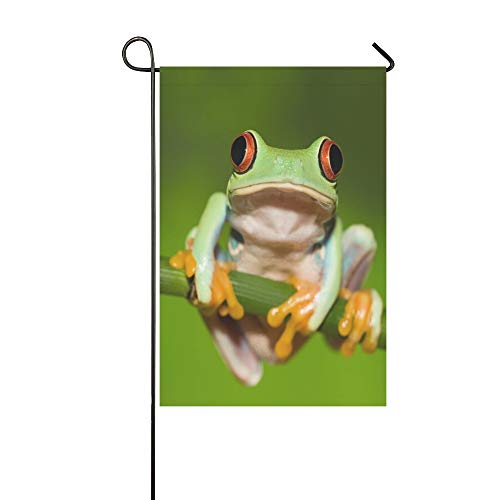 WUTMVING Home Decorative Outdoor Double Sided Red Eyed Tree Frog On Branch Garden Flag,House Yard Flag,Garden Yard Decorations,Seasonal Welcome Outdoor Flag 12 X 18 Inch Spring Summer Gift