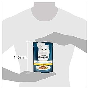 Purina-Gourmet-Perle-humedo-Cat-Food-Mini-Filetes-en-salsa-Connoisseurs-Collection-paquete-de-24-bolsas