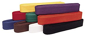 (BlackBeltShop Solid Rank Karate Martial Arts and TaeKwonDo Belts Purple size 1)