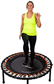 FIT BOUNCE PRO XL Bungee Rebounder USA   Half Folding Silent & Orthopaedic Quality Indoor Mini Trampoline