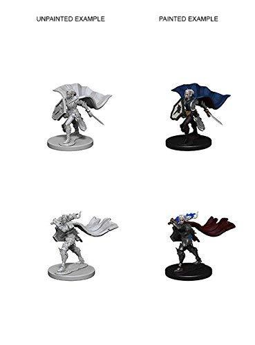 Pathfinder Deep Cuts Unpainted Minis: Elf Female Paladin [並行輸入品] B07S8ZTDHL