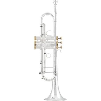 Como Arnolds Sons ATR-y B-Trompete 5200GSG Terra: Amazon.es: Instrumentos musicales