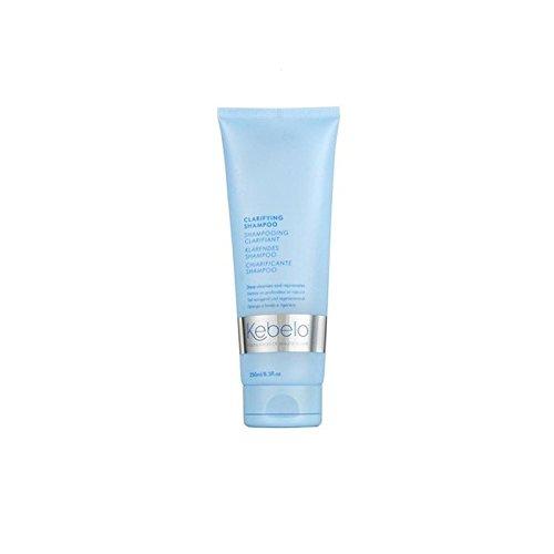 Kebelo Clarifying Shampoo (250ml) (Pack of 6) - 明確化シャンプー(250ミリリットル) x6 [並行輸入品] B0718YZSCJ