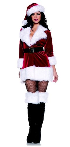 Sexy Secret Santa Costume - Medium (Secret Santa Costume)