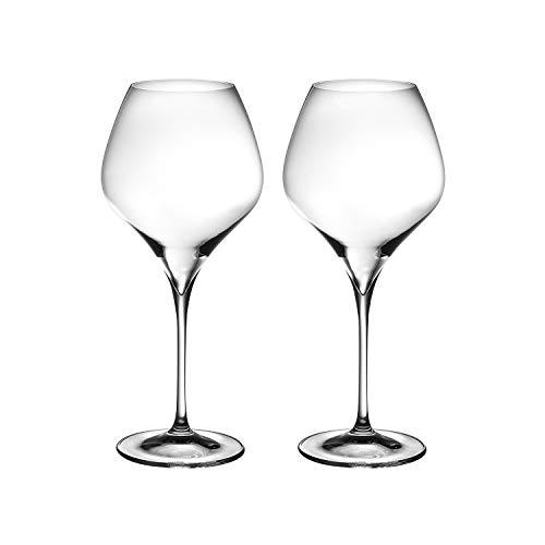 Riedel Vitis Pinot Noir Glass, Set of 2