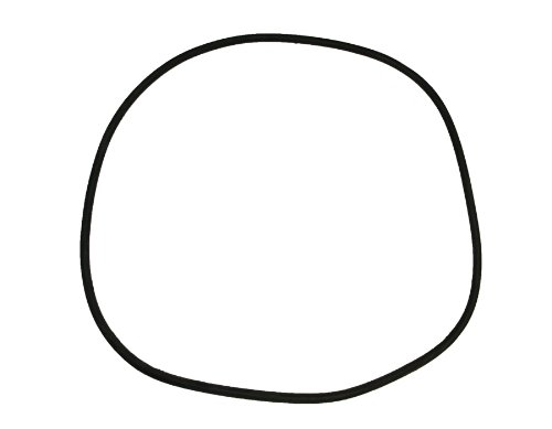 Pentair 24850-0009 25-Inch Cord O-Ring for Tank Replacement for Select Sta-Rite Pool and Spa Filters