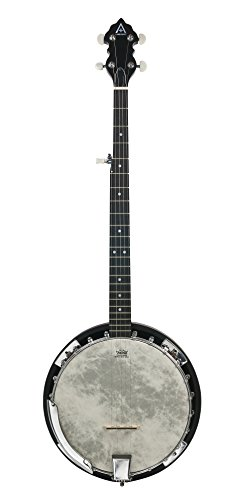 Hohner ARB40-M A+ Resonator back 5-String Banjo with Gig Bag by Hohner Inc, USA