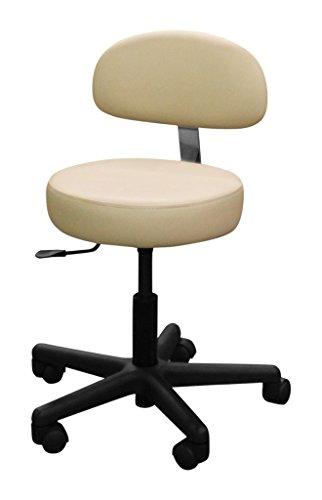 ''Advantage'' Pro Salon Stool with Backrest by Galaxy Salon