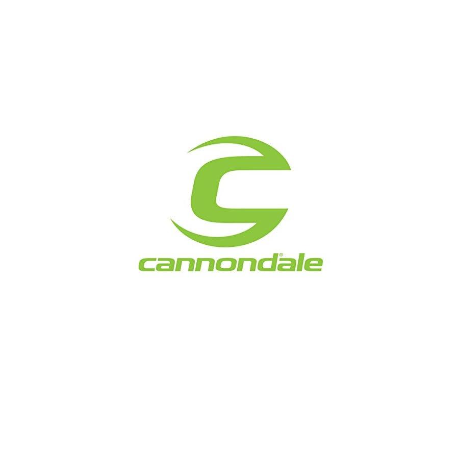 Cannondale 2017 Diagonal 20oz Water Bottle