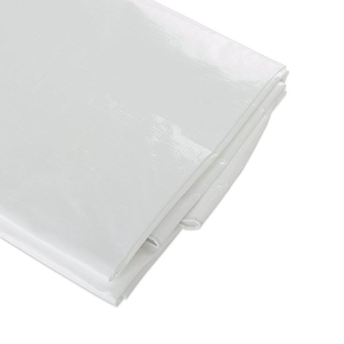 ATE Pro. USA 96082 Heavy-Duty Tarpaulin, 10 by 20-Feet, White