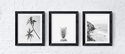 Pineapple Art, Palm Tree Art, Black and White Photography Coastal Home Wall Art Decor Poster, Set of 3, 11x14 Inches (Unframed) - Coastal Palm Decor Trees