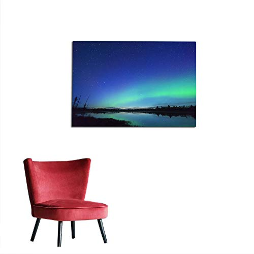 kungfu Decoration Wallpaper Northern Wilderness Land and Trees Silhouetted with deep Blue Starry Sky and Northern Lights Arching Over Landscape Funny Poster W19.7 x L15.7
