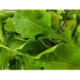 1,000+ Arugula Seeds- Rocket Salat (Roquette) Heirloom Variety