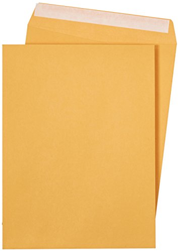 AmazonBasics Catalog Envelopes, Peel & Seal, 9 x 12 inch, Brown Kraft, 250-Pack