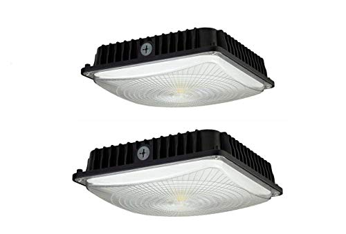 CYLED 100W LED Canopy Light Industrial Waterproof Explosion-proof Outdoor High Bay Balcony Car Park Lane Gas Station Ceiling Light Equivalent 450W HID/HPS 11000 Lm 5500K DLC qualified Pack Of 2 ()