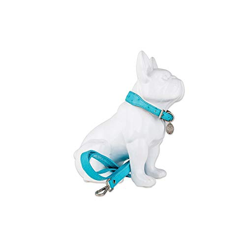(HaberHauer Collection Ostrich Leather Designer Dog Collar & Leash Set, Medium 13.75-17 Turquoise)