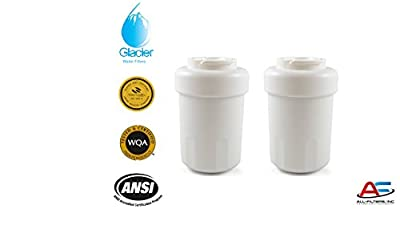 GE MWF compatible Premium Replacement Refrigerator Water Filter (2)