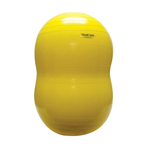 Physiogymnic Ball - PhysioGymnic Molded Vinyl Inflatable Ball, Yellow, 18 Inch