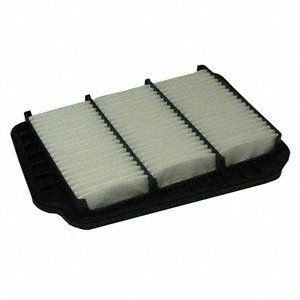 Ecogard XA4711 Air Filter