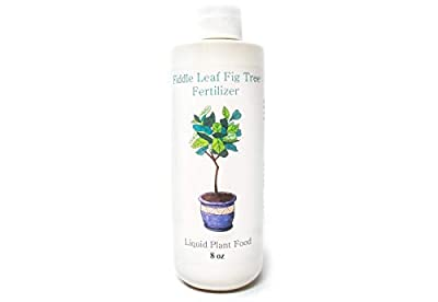 Fiddle Leaf Fig Tree Fertilizer | Ficus Plant Food | Improves Leaves and Branches | Potted Indoor Trees/House Plants Treatment by Plants for Pets