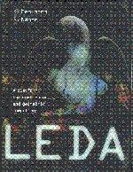 [Leda 2 Part Set: A Platform for Combinatorial and Geometric Computing: LEDA 2 Part Paperback Set: A Platform for Combinatorial and Geometric Computing] [Author: Mehlhorn, Kurt] [June, 2009] (Leda A Platform For Combinatorial And Geometric Computing)