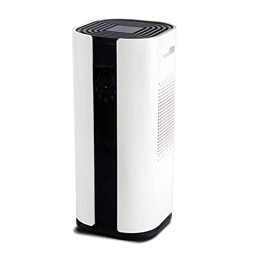 dehumidifiers for home quiet - 9