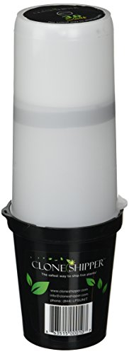 Led Wet Niche Light in US - 5