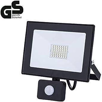 ZEYUN Foco reflector LED de 30 vatios con detector de movimiento ...