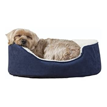 Amazon.com : Armarkat Pet Bed 22-Inch by 19-Inch Oval