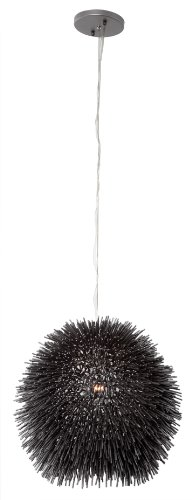 (Varaluz 169M01BL Urchin 1-Light Mini Pendant - Black)
