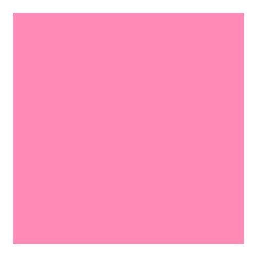 Lee Filters Flesh Pink 24x21