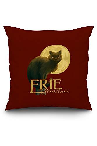 Lantern Press Erie, Pennsylvania - Black Cat - Halloween Oil Painting - Contour 101549 (20x20 Spun Polyester Pillow, Custom Border)