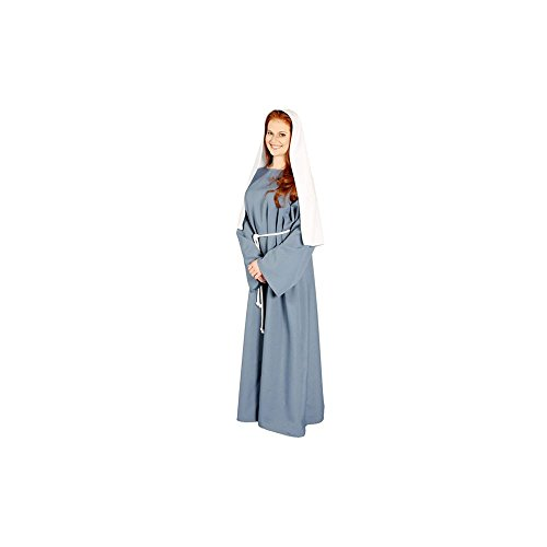 Alexanders Costumes Women's Biblical Peasant Lady, Blue, One Size]()