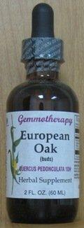 La gemmothérapie - Chêne européen, bourgeons - 2 oz