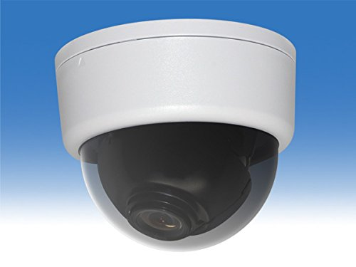 【WTW-HD32SW】220万画素高画質HD-SDIドームカメラ カラー:ホワイト B019MMZB0A