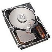 IBM SAS 300 Internal Hard Drive 40K1044