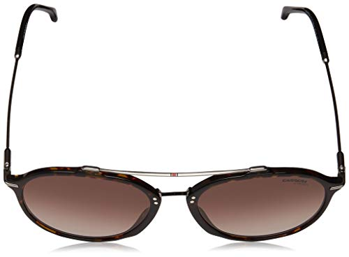 5331a3779f Carrera 171 S 086 HA Dark Havana Plastic Aviator Sunglasses Brown Gradient  Lens