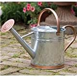 Limited Time Offer on Gardman 8326 Galvanized Steel Watering Can with Copper Accents, 1-Gallon.