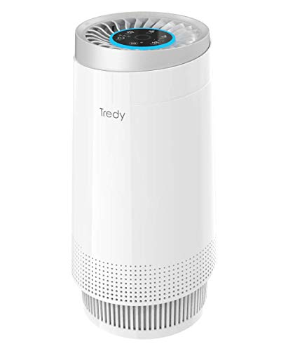 Air Purifier for Home 180 Sq.ft Room with H13 True Hepa Filter, Removes Dust/Smoke/Odor/Pollen/Pet Dander and Other Particles(Available for California)